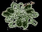 Lambic Pentameter